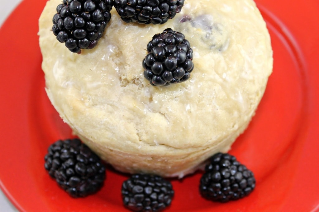 English Blackberry Pudding