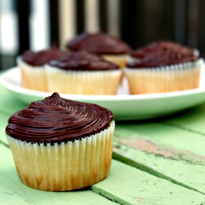 Gluten-Free Boston Cream Pie Cupcakes