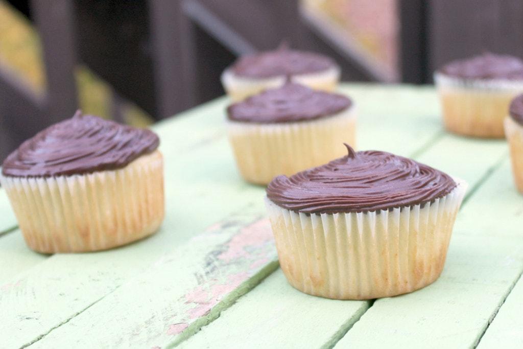Gluten-Free Boston Cream Pie Cupcakes