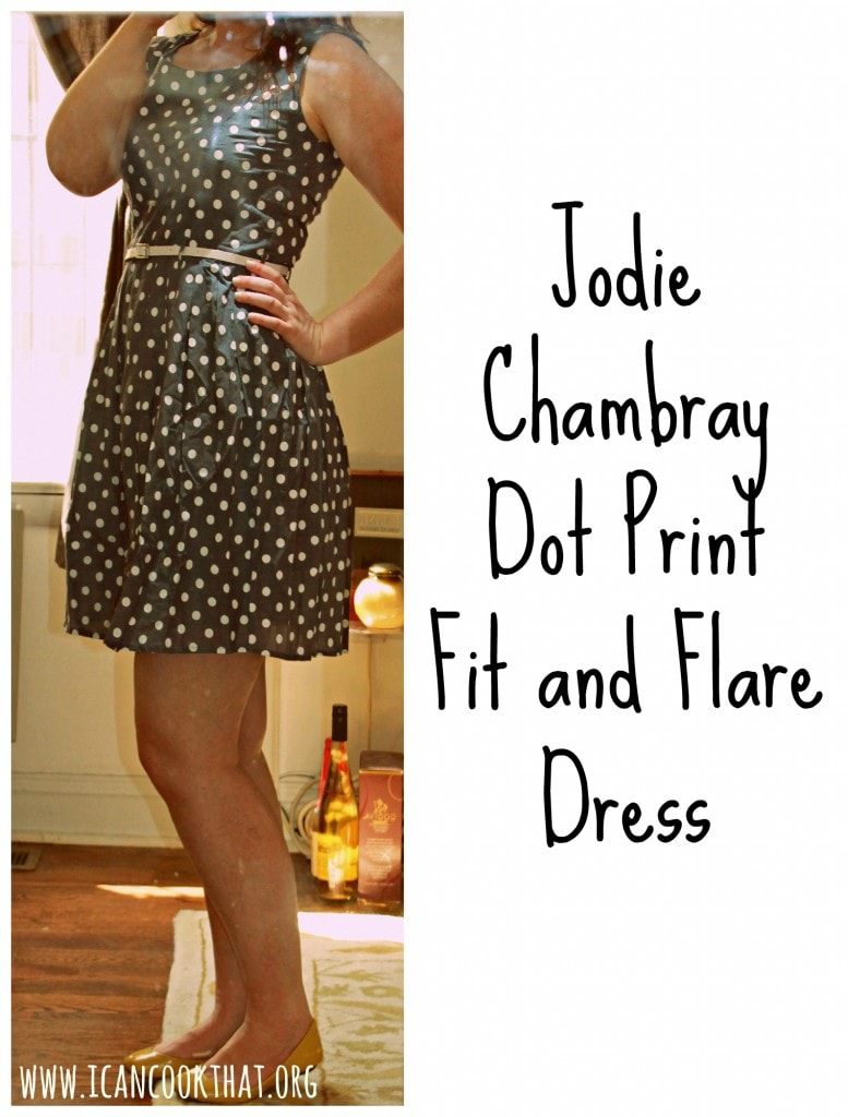 Jodie Chambray Dot Print Fit and Flare Dress