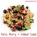 Farro, Berry, & Walnut Salad