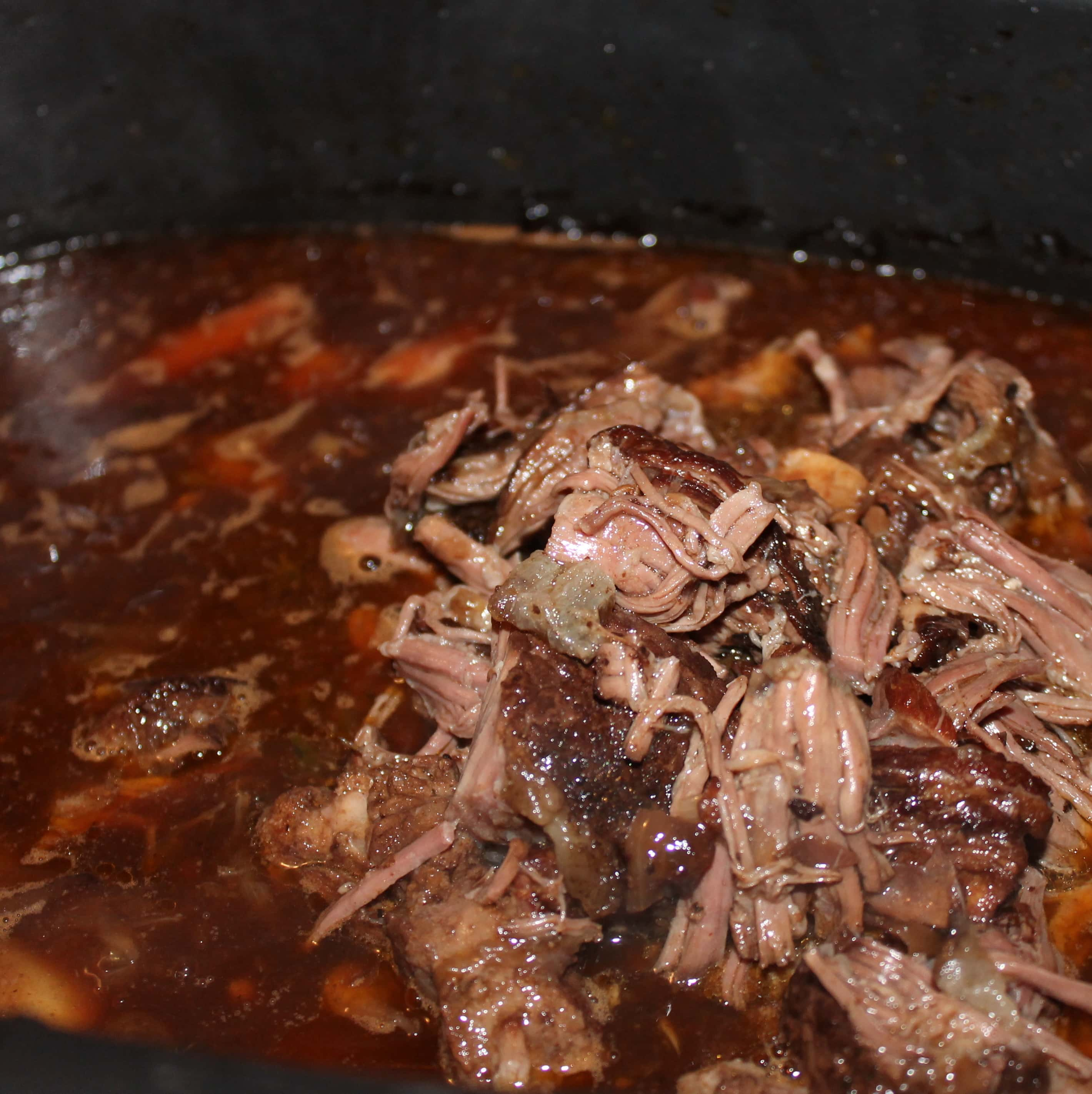 Slow Cooker Oxtail and Short Rib Stew Recipe   I Can Cook That