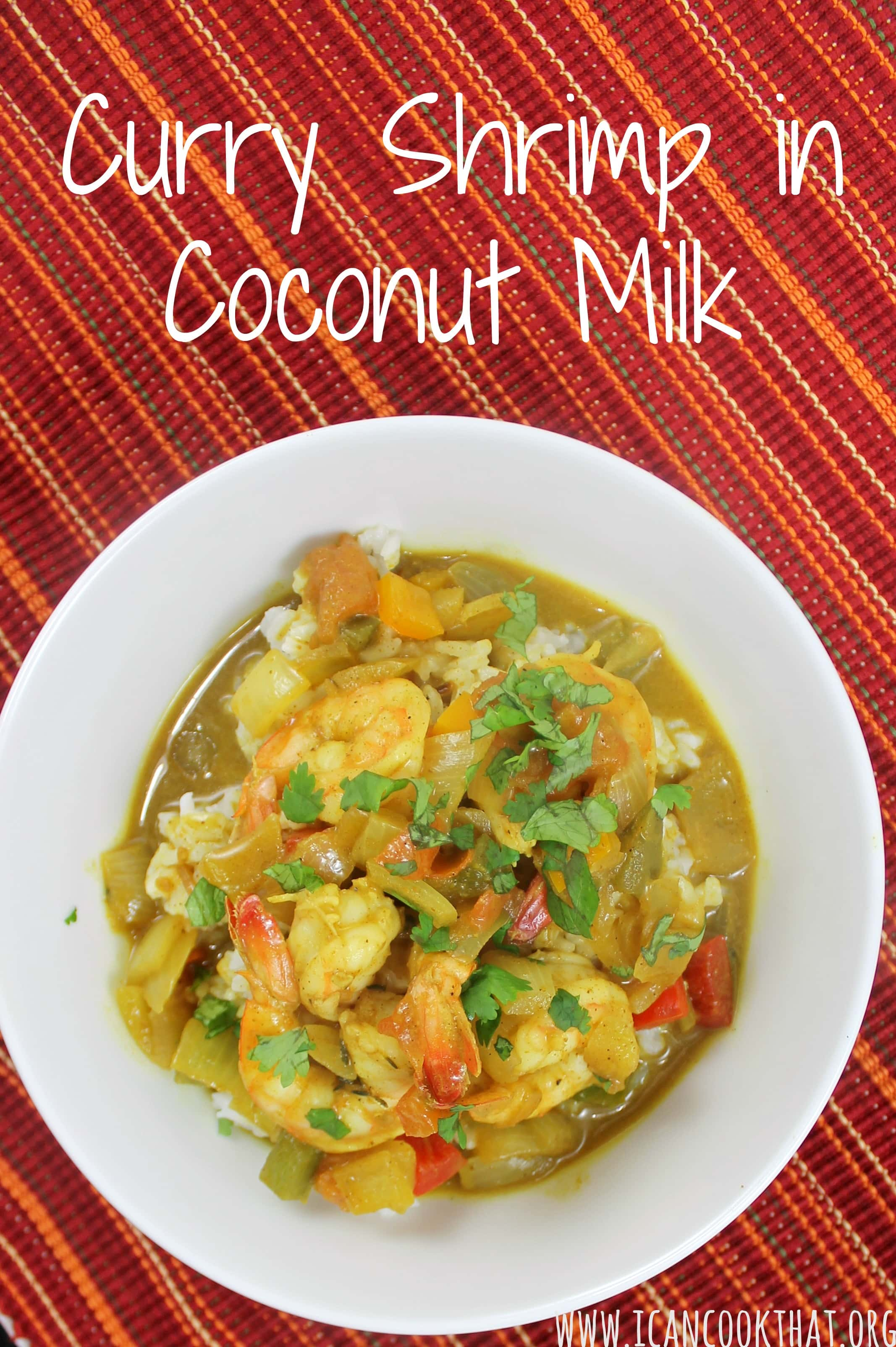 Curry Shrimp in Coconut Milk Recipe | I Can Cook That