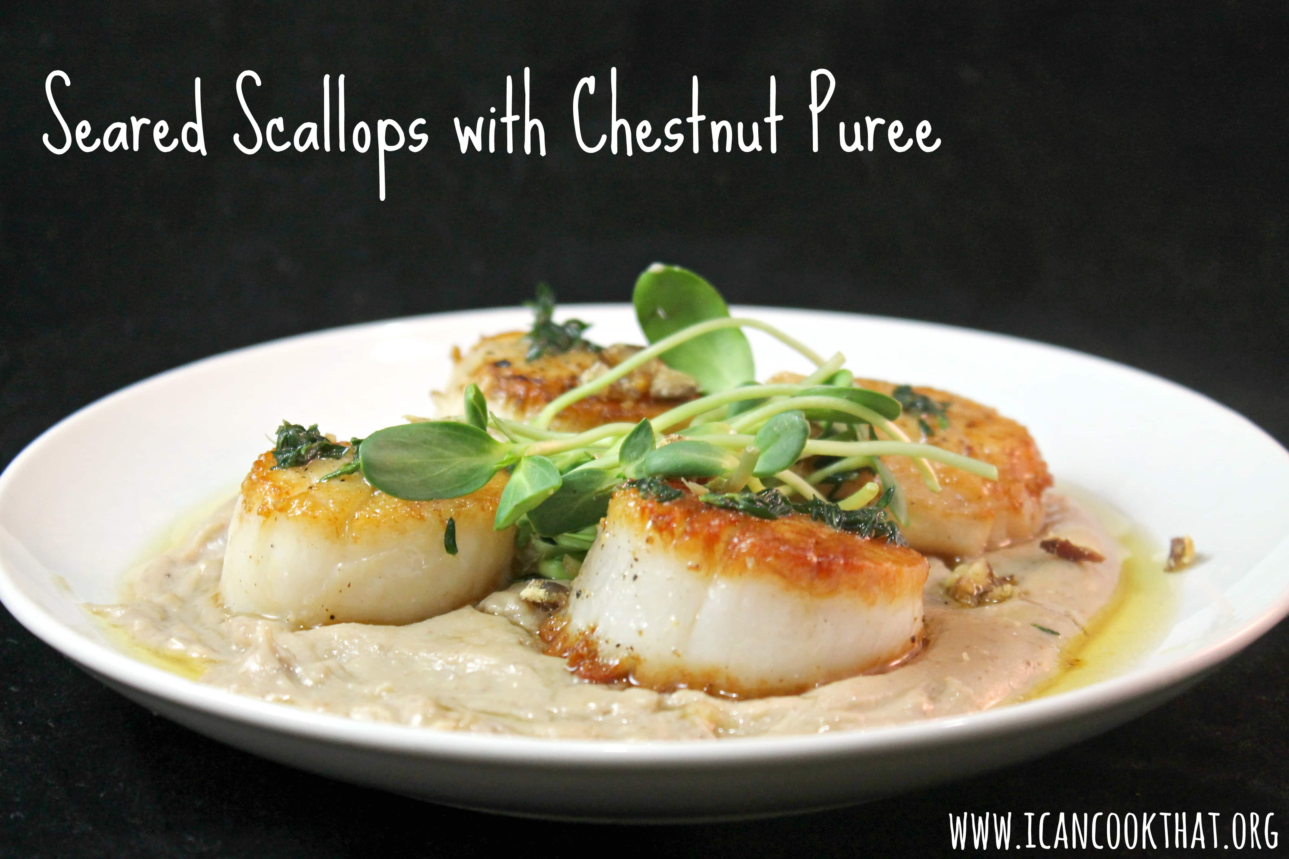 Seared Scallops with Chestnut Puree