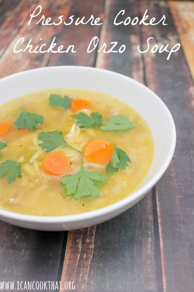 Pressure Cooker Chicken Orzo Soup Recipe I Can Cook That